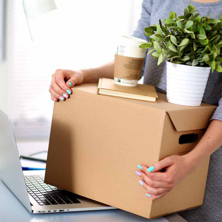 Have You Scheduled a Removal for Your Office? What You Need to Know